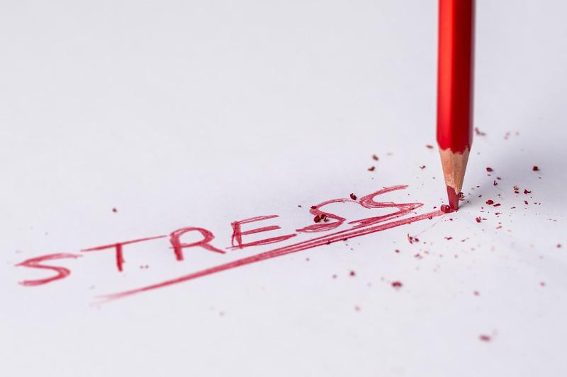 Избавляются от стресса!