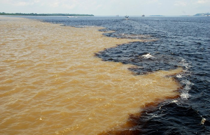 Amazone_Manaus