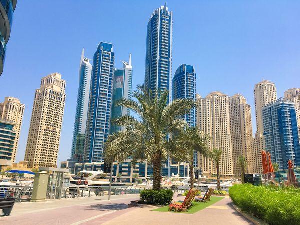 Как я совмещал отдых в ОАЭ и удаленную работу
